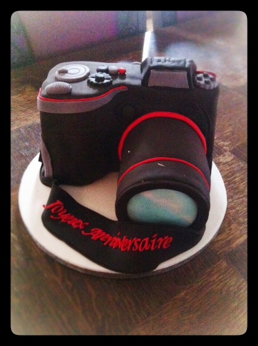 appareil photo, wedding cake, nikon, canon, papou, patisserie, zellwiller, alsace