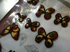 papillon, chocolat, couleur, cup cake, papou, pâtissier, chocolatier, créateu