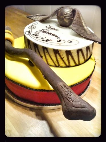 dessert, Harry Potter, papou, quidditch, chocolat, pâtisserie, vif d'or, mousse, entremet, anniversaire, Franck Valentin, pâtissier, zellwiller, bas rhin, alsace, france