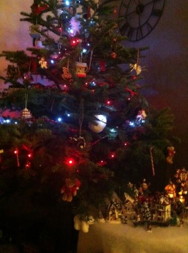 sapin, Noël, fin d'année, fête, dessert, pâtisserie, papou, 67, hoenheim, bûche